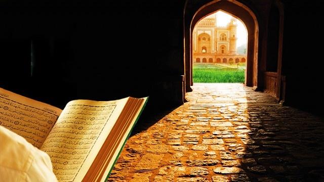 Allah'ın gönderdiği peygamber sayısı, genel inanışa göre 124 bindir.  Kur'an'da ismi geçen peygamber sayısı ise 25'tir. Bunların ilki Hz. Adem (as) ve sonuncusu ise Hz. Muhammed (sav)'dir.  Peygamberlerin her biri bir veya birkaç dünya işiyle meşgul olmuş ve geçimlerini bu yolla sağlamıştır. Böylece hem insanlara güzel ve yararlı meslekler öğretmişler hem de onları başkalarına boyun eğmekten kurtarmışlardır. Bundan dolayı da tevhid akidesini kimseden korkmadan savunmuşlardır.    Peki, Kur'an-ı Kerim'de adı geçen peygamberlerin bilinen meslekler nelerdir?