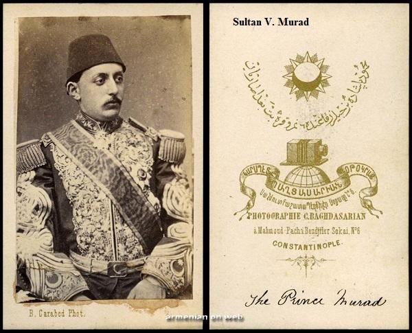 Sultan Beşinci Murad'ın tek oğlu Şehzade Mehmed Selâhaddin Efendi'den geriye kalan hatırat, mektup ve evraklar Prof. Dr. Edhem Eldem'in çabalarıyla kitap haline getirildi.