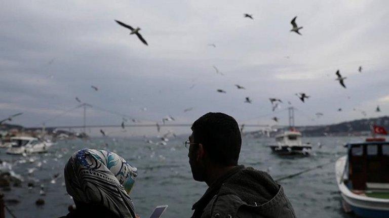 Asırlık çınarın altı İstanbulluların buluşma noktası oldu