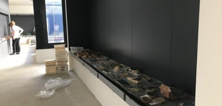 İstanbul Üniversitesi Arkeoloji Müzesi kuruyor