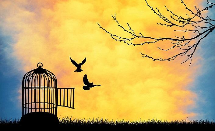 Her istediğimizi yapmak bizi özgür kılmaz, benliğimize köle yapar