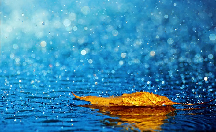 Yağmur ne için yağıyor: ''Ötesini Söylemeyeceğim'' şiirinde imgeler