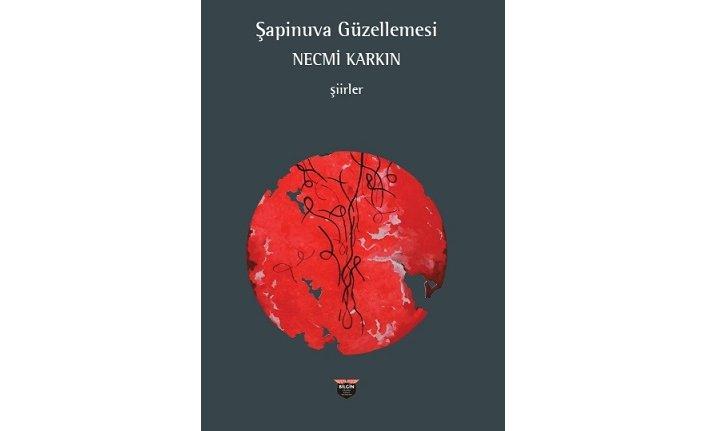 Yeni kitap: Şapinuva Güzellemesi