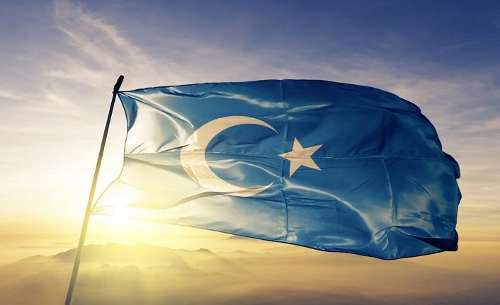 Doğu Türkistan: Siyasi bir mesele mi, insani mi?