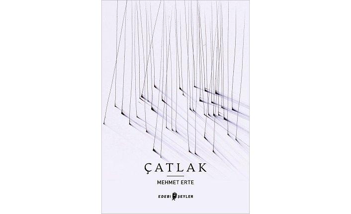 11 yıl aradan sonra Mehmet Erte'den yeni bir şiir kitabı: Çatlak