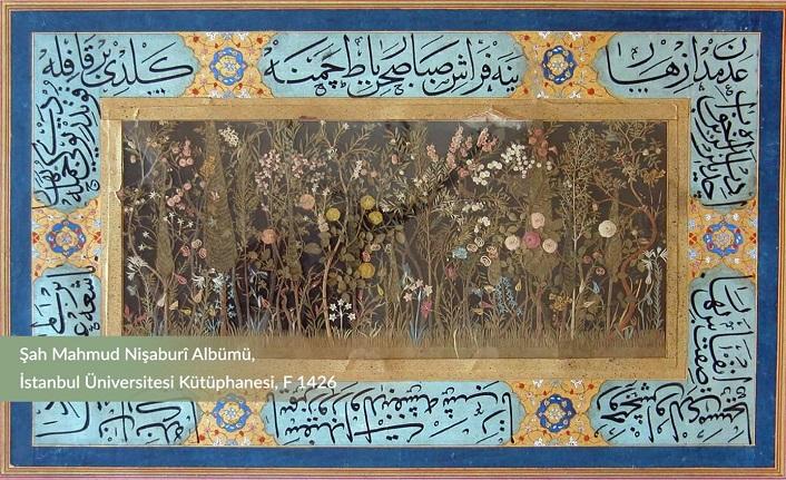 Osmanlı'nın dillere destan çiçekleri