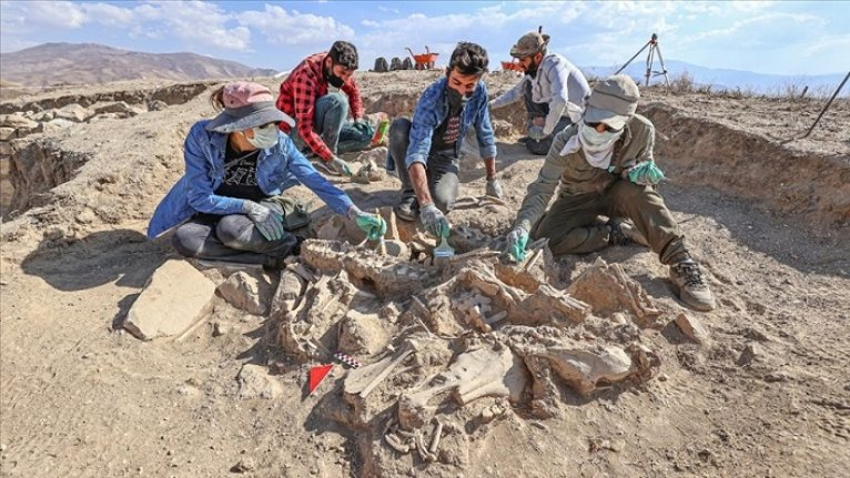 Köpeği, 4 atı, sığır ve koyunuyla gömülen Urartulu'nun mezarı arkeologları heyecanlandırdı