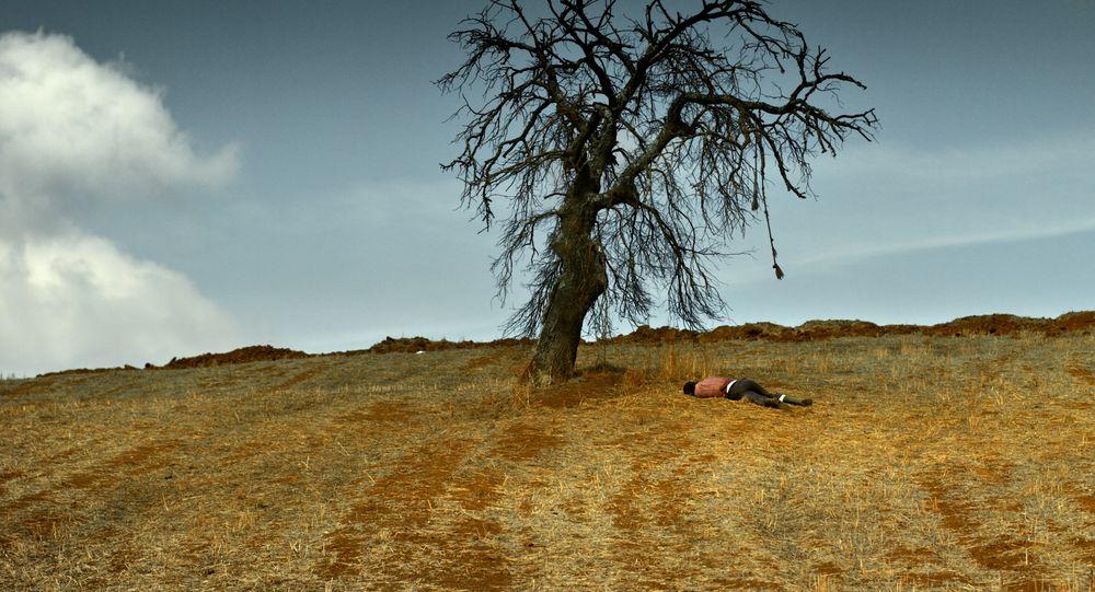 Nuri Bilge Ceylan'dan Kusurlu Bir Ustalık Eseri: Ahlat Ağacı