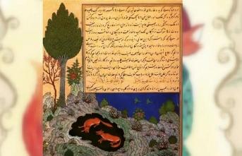 Kelîle ve Dimne'nin özelliği nedir? Türkçeye ne zaman çevrilmiştir?