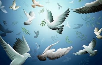 Burak Ş. Çelik'ten ilk şiir kitabı Barışta Elverişsiz