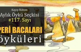 """Kayıp Rıhtım Aylık Öykü Seçkisi'nin 117. sayısında """"Peri Bacaları Öyküleri"""" var!"""
