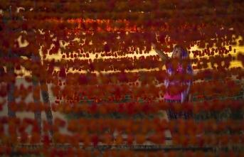 """""""Gaziantep'te Hasat Mevsimi"""" temalı fotoğraf yarışması"""