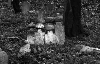 Ölüm düşüncesi her an yeniden diriltir bizi
