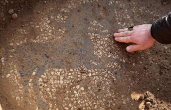 Tarlada buldukları mozaiği 30 milyon dolara satmak isterken yakalandılar