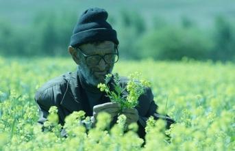 Bizim hikayemizi anlatan kara bir mizah: 'Ölümsüzler Köyü'