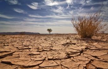 Bu romanda toprak yağmur bekler, halk da devletini…