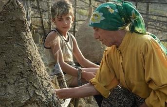 Oscar adayı 'Honeyland' yarın ekrana gelecek