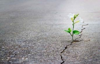 İnanç ve umut