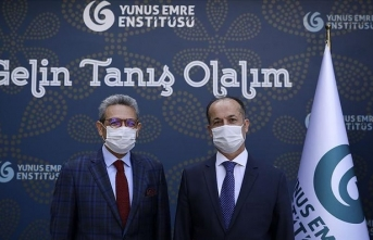 Geleneksel Türk müziği Yunus Emre Enstitüsü ile dünyaya açılıyor