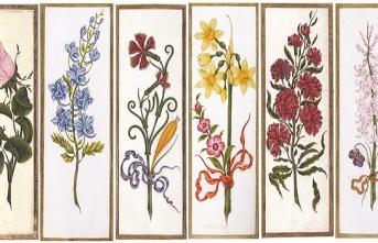 Osmanlı'da Çiçeklerin Dili