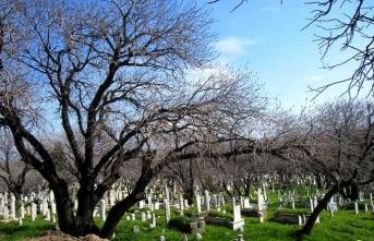 Batı Anadolu'daki Ahlat: İlbade Mezarlığı
