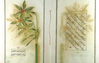 Şükûfenâmeler: Osmanlı döneminde çiçekçilik