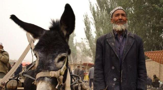 Abbas Sayar'ın köy romancılarından farkı ne?