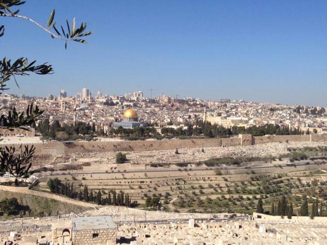 Filistin meselesi tüm insanlığın meselesi