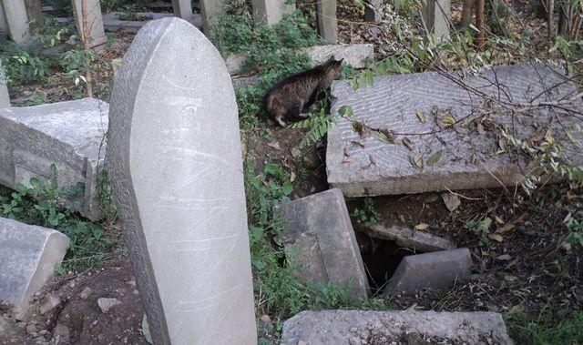 Mezar taşları tapu ise elde tapu da kalmayacak
