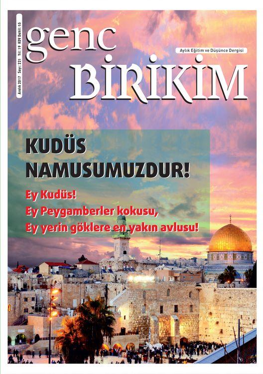 Genç Birikim dergisinin 221. sayısı çıktı
