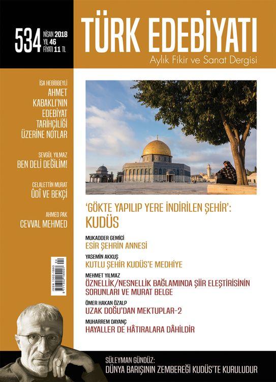 Türk Edebiyatı dergisinin 534. sayısı çıktı