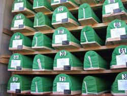 Sevdalinkalar Sustu Srebrenitsa'da!