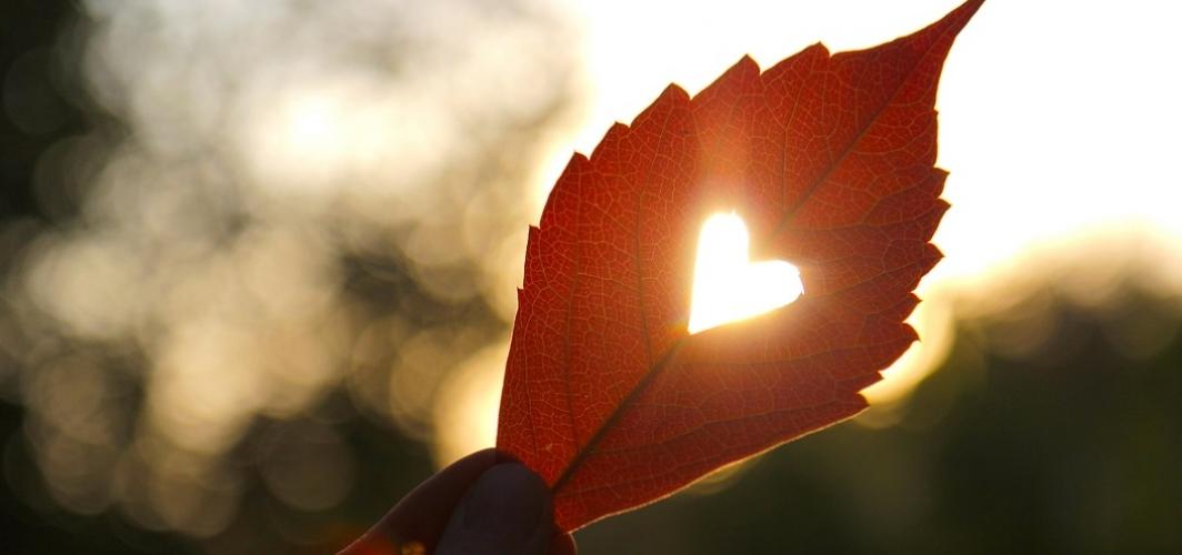 Hayat kalpsizlerle bir kalbi olanların mücadelesidir