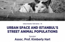 """""""Urban Space and Istanbul's Street Animal Populations"""""""
