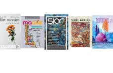 Ekim 2020 dergilerine genel bir bakış-4