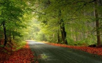 Sonbahar; eğitim ve kültür camiasının ilkbaharı