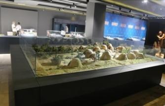 Hasankeyf Müzesi  gün sayıyor