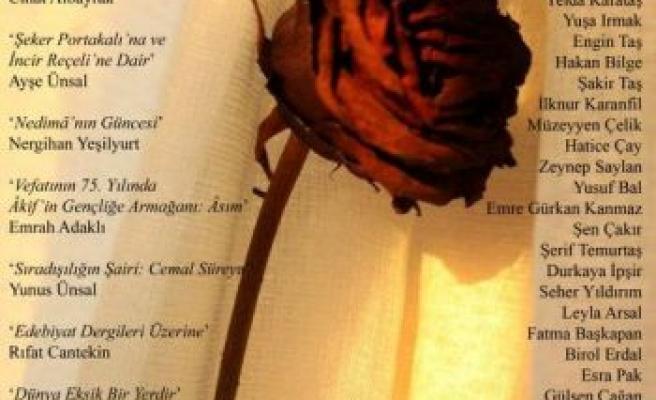 'Edebiyatçının Sosyal Sorumluluğu'