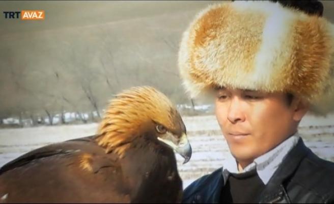 Ülkeler değişse de kuş sevgisi hep aynı (video)