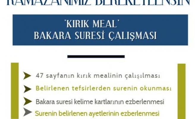 'Kırık Meal' Bakara suresi dersleri başlıyor