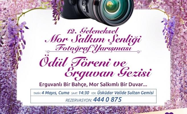 12. Mor Salkım Şenliği fotoğraf yarışması