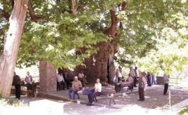 Bursa'nın en güzel köyü burası!