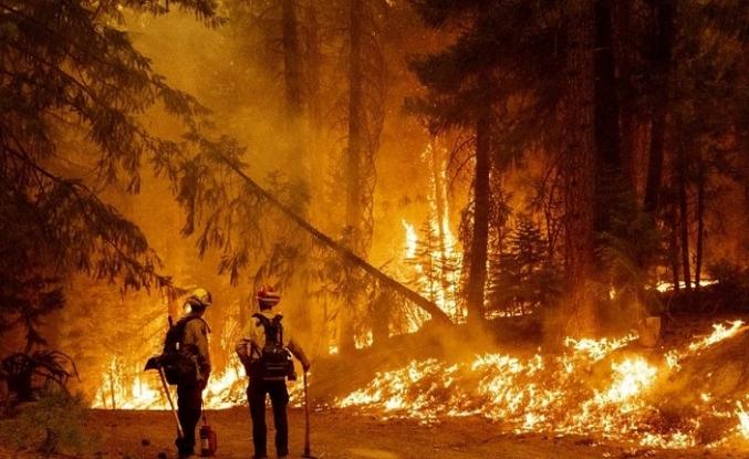 Böyle bir yangın görülmemiştir